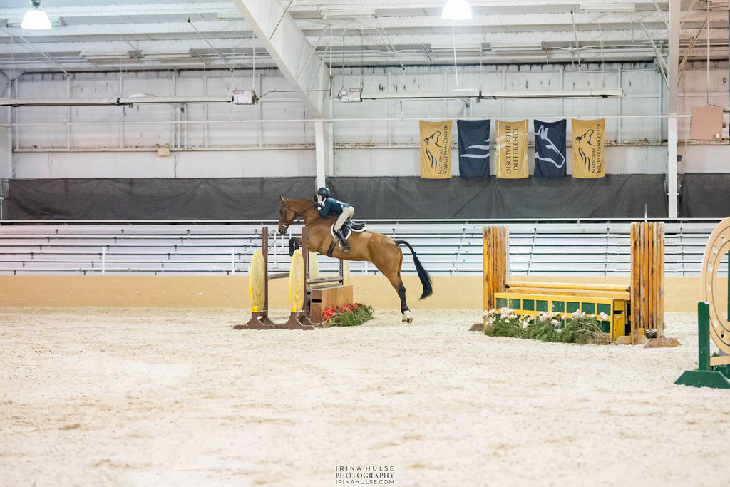 Horse jumping at a hunter jumper show like the Archway Fall Classic.