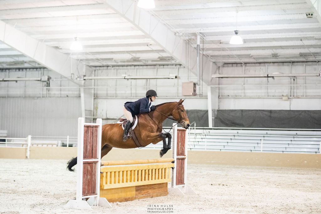 Horse jumping at a horse show to represent the Meet Me in St. Louis III horse show.
