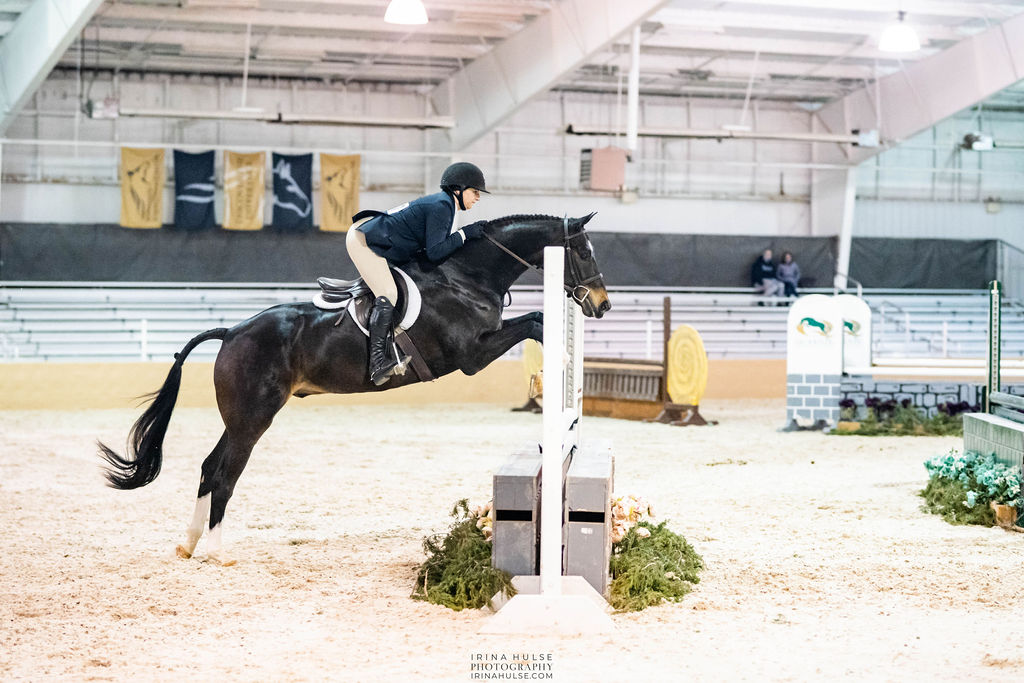 Horse jumping over a fence to represent the Meet Me in St. Louis I horse show.