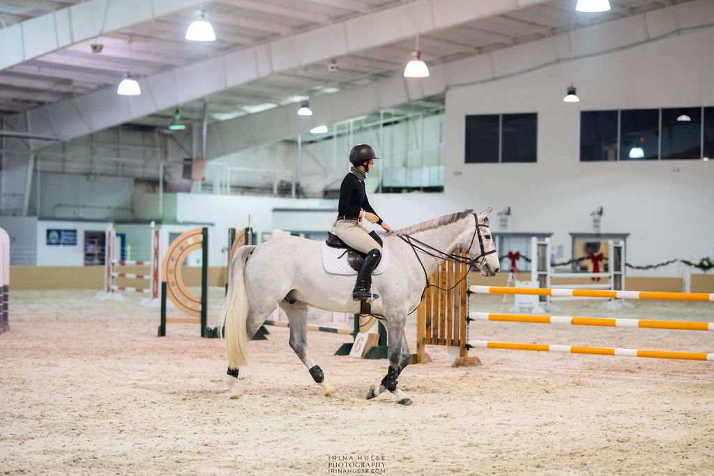 Horse and rider in the show ring to represent the Meet Me in St. Louis V horse show.
