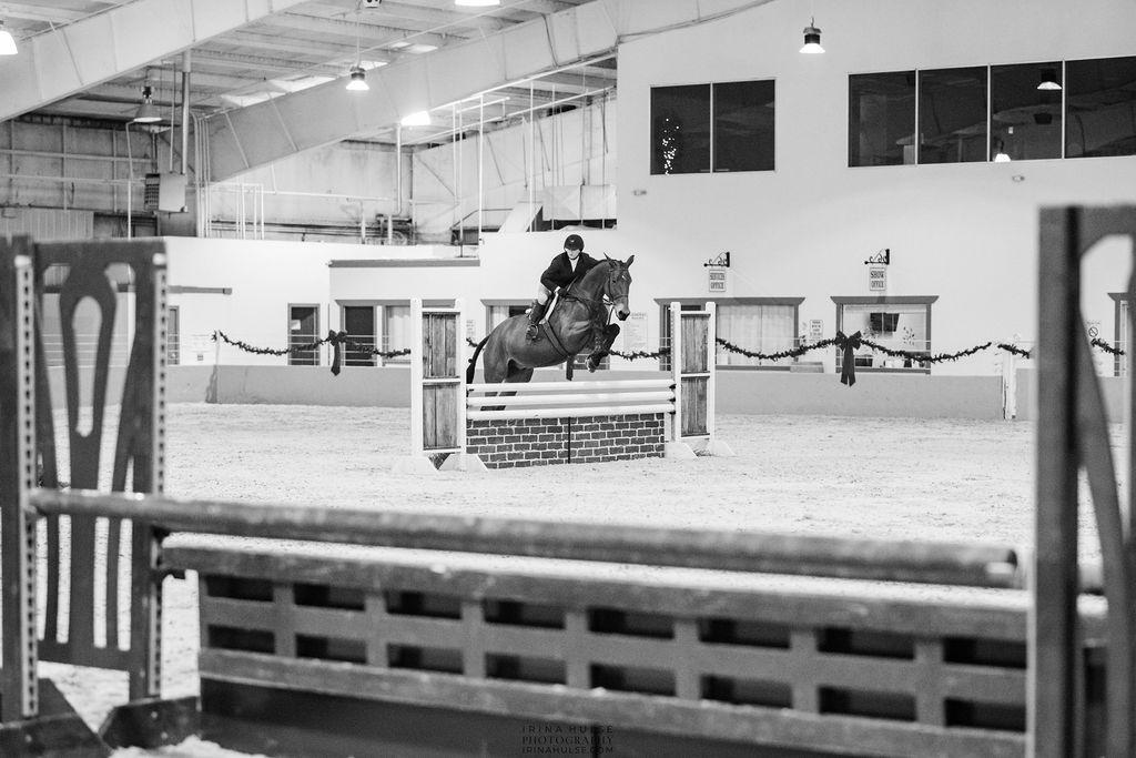 Horse show photo.
